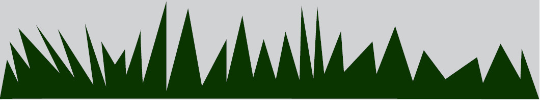 trava