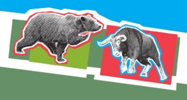 <span>Býk či medvěd</span> aneb příručka pro začínající investiční poradce (1.díl)