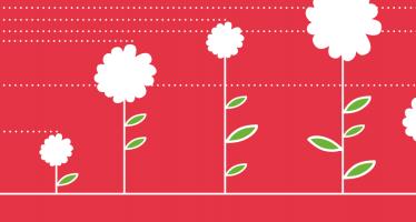 Jak pěstovat úrodné investice aneb <span> Jak rozpoznat TOP produkty</span>