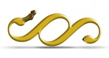 Obyčejná banánová slupka? <span> Může přijít pěkně draho!</span>